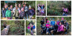 Four forest adventures for this year's Knysna Oyster Festival!