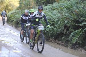 Knysna Cycle Tour MTB